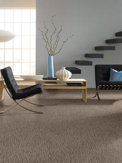 carpet flooring in west chester